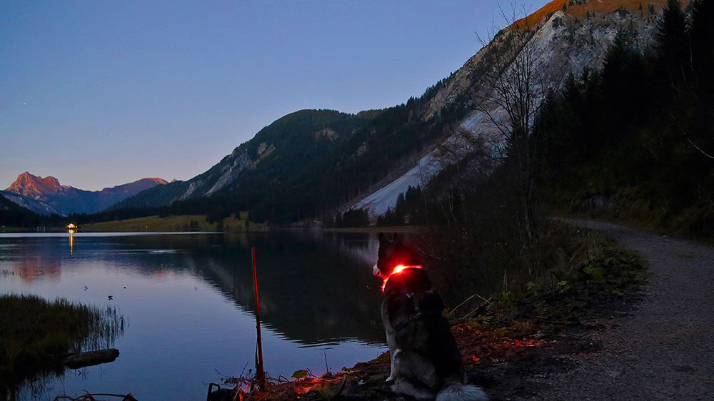 Evening mood at the mountain lake with LEUCHTIE LED light collar